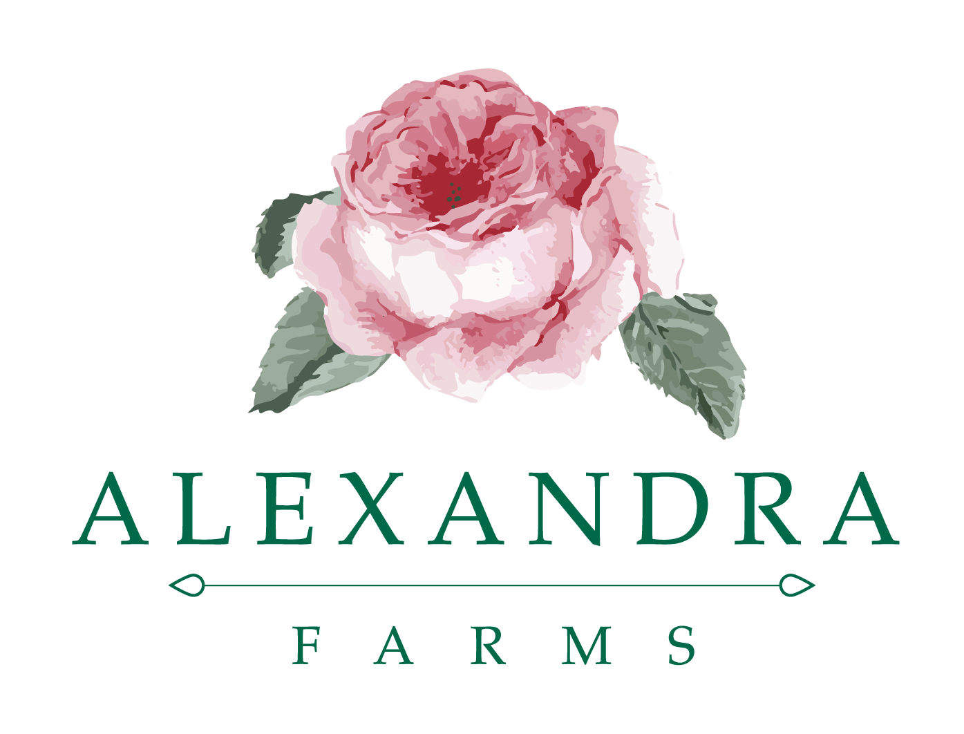 Rose Garden Roses Alexandra Farms