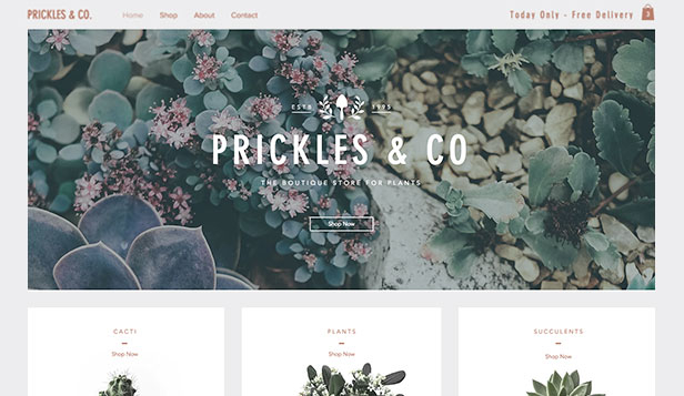 Online Store Website Templates Wix