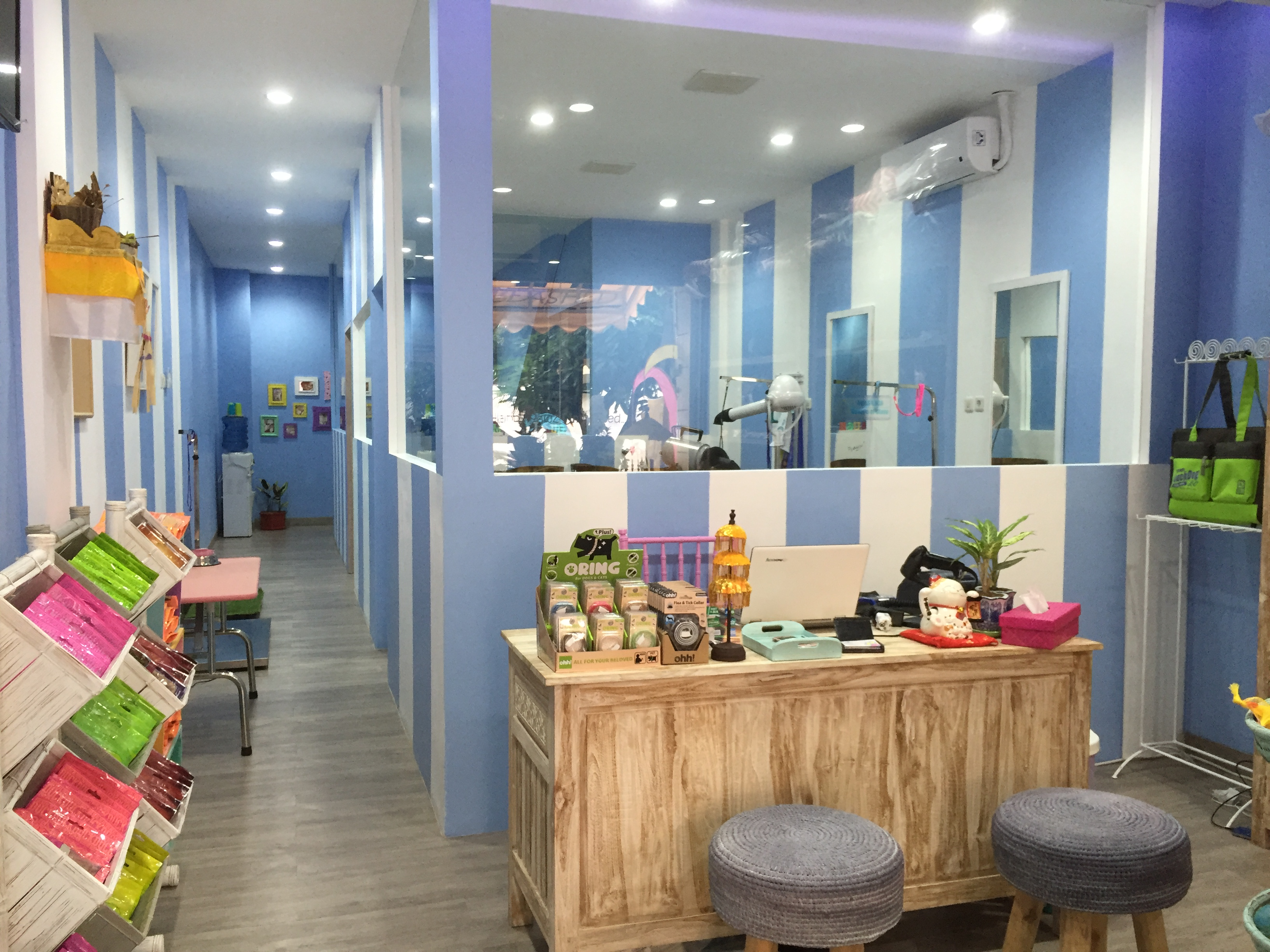 Cat Interior Terbaik Pet Grooming Pet Boarding Pet Daycare Pet Shop