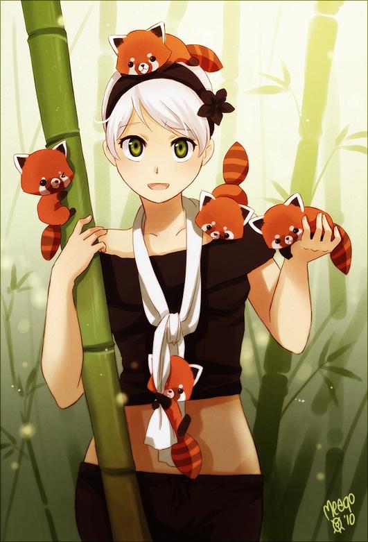 Wallpaper Of Beautiful Chinese Girl Red Panda Animal Zerochan Anime Image Board