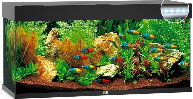 éclairage Led Aquarium 120 Cm Aquarium Juwel Rio 180 Led