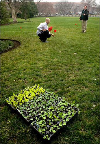 Obamas Prepare to Plant White House Vegetable Garden - The New York