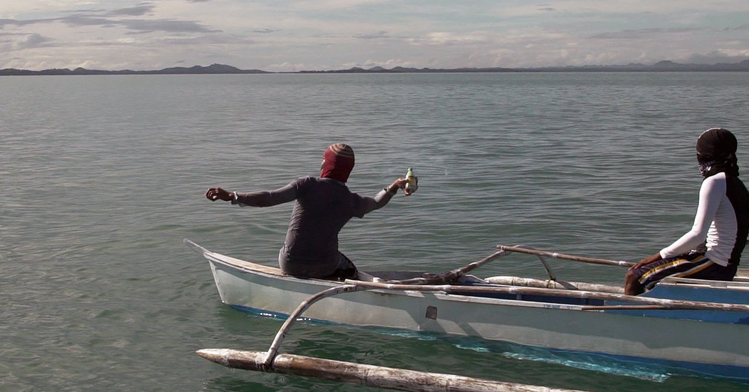 In the Philippines, Dynamite Fishing Decimates Entire Ocean Food
