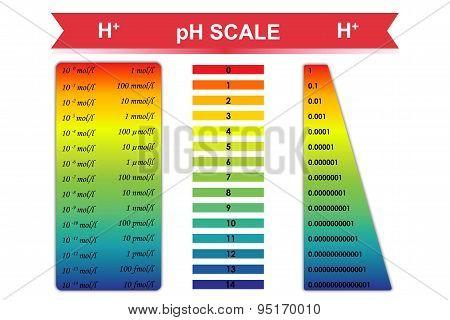 PH Scale Chart Vector Vector  Photo (Free Trial) Bigstock - ph chart