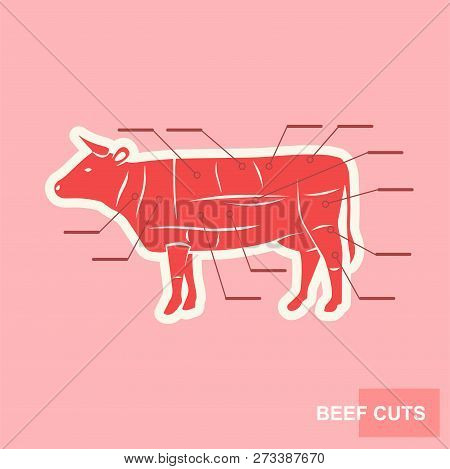 Poster Cut Beef Set Vector  Photo (Free Trial) Bigstock