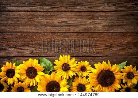 Fall In Nyc Wallpaper Wooden Fence Garden Images Illustrations Vectors