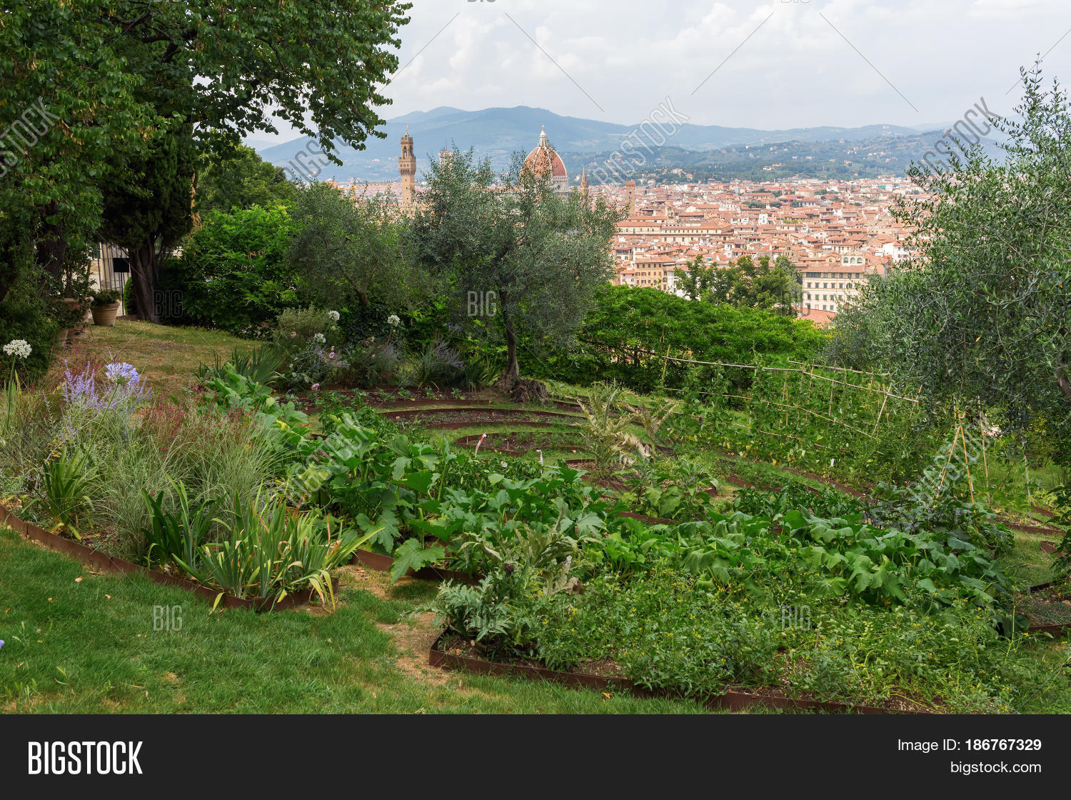 Giardino Bardini View Image Photo Free Trial Bigstock