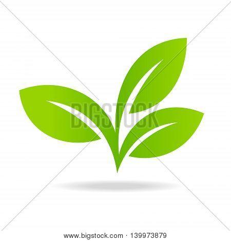 Logos Green Leaf Vector  Photo (Free Trial) Bigstock