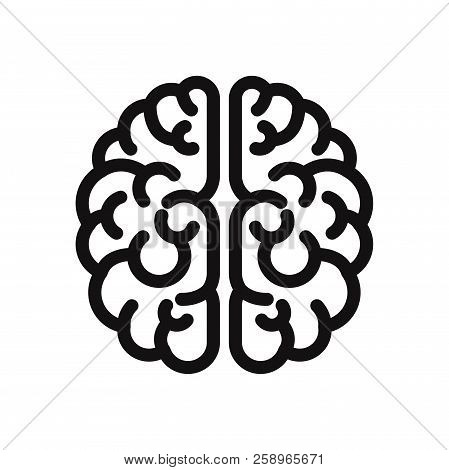 Brain Icon Isolated On White Background Brain Icon In Trendy Design
