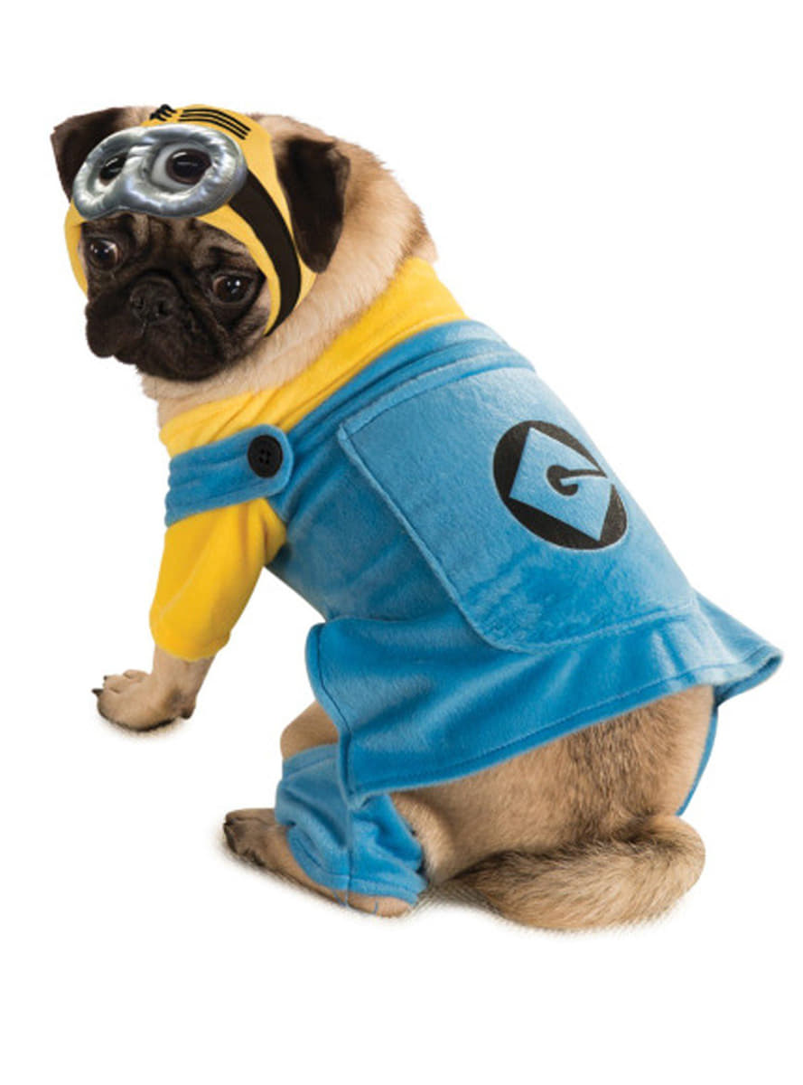 Minion costume for a dog