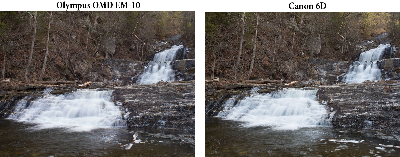 Full Frame Mirrorless Vs Dslr Side By Side Image Comparison Full Frame Dslr Vs Micro
