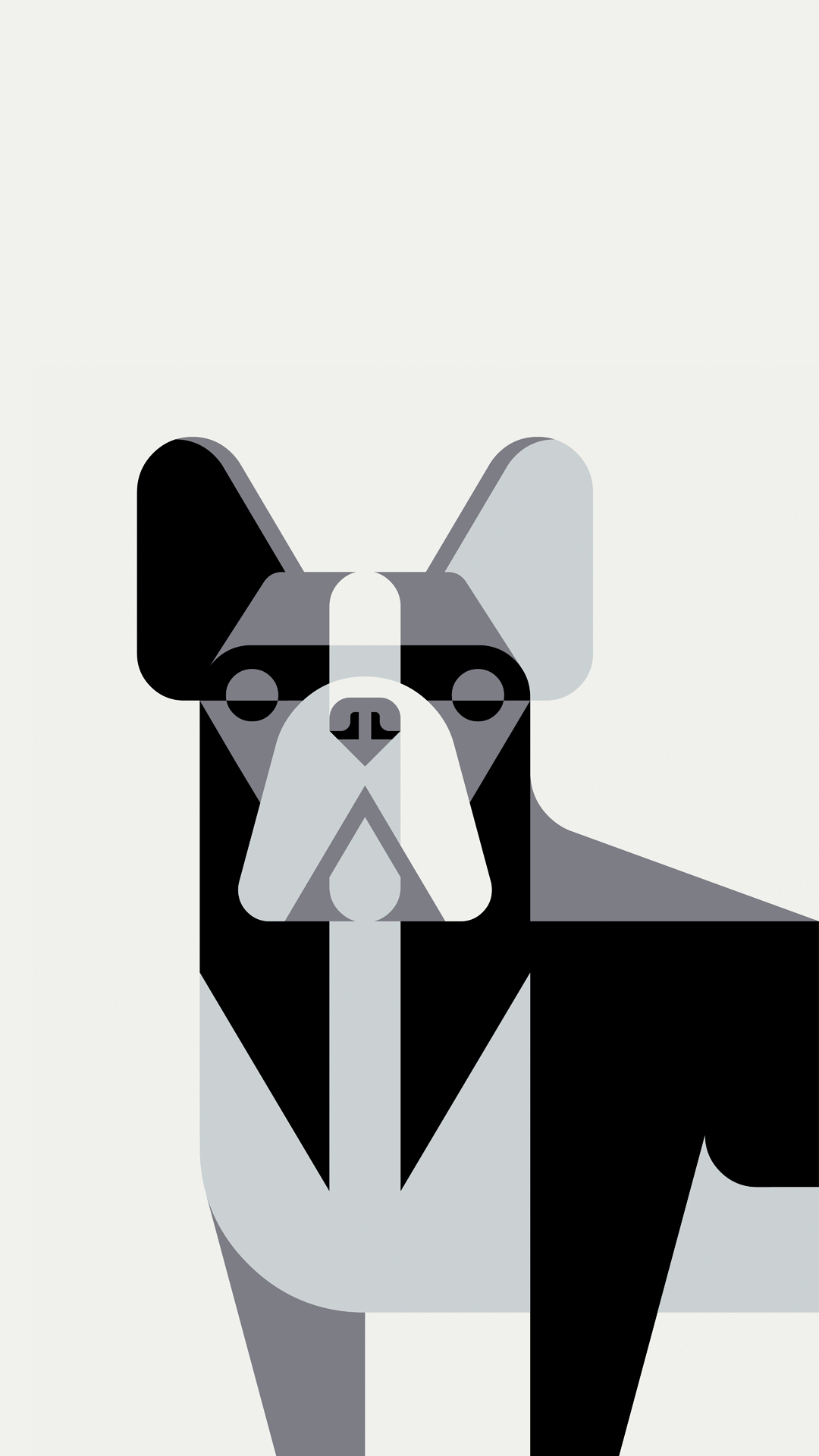 Joker Wallpaper Iphone Josh Brill French Bulldog Portrait