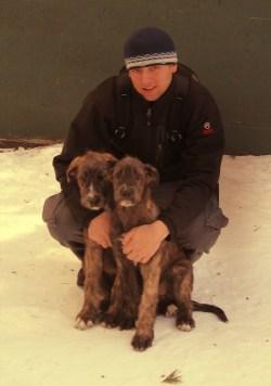 Small Of Irish Wolfhound Rescue