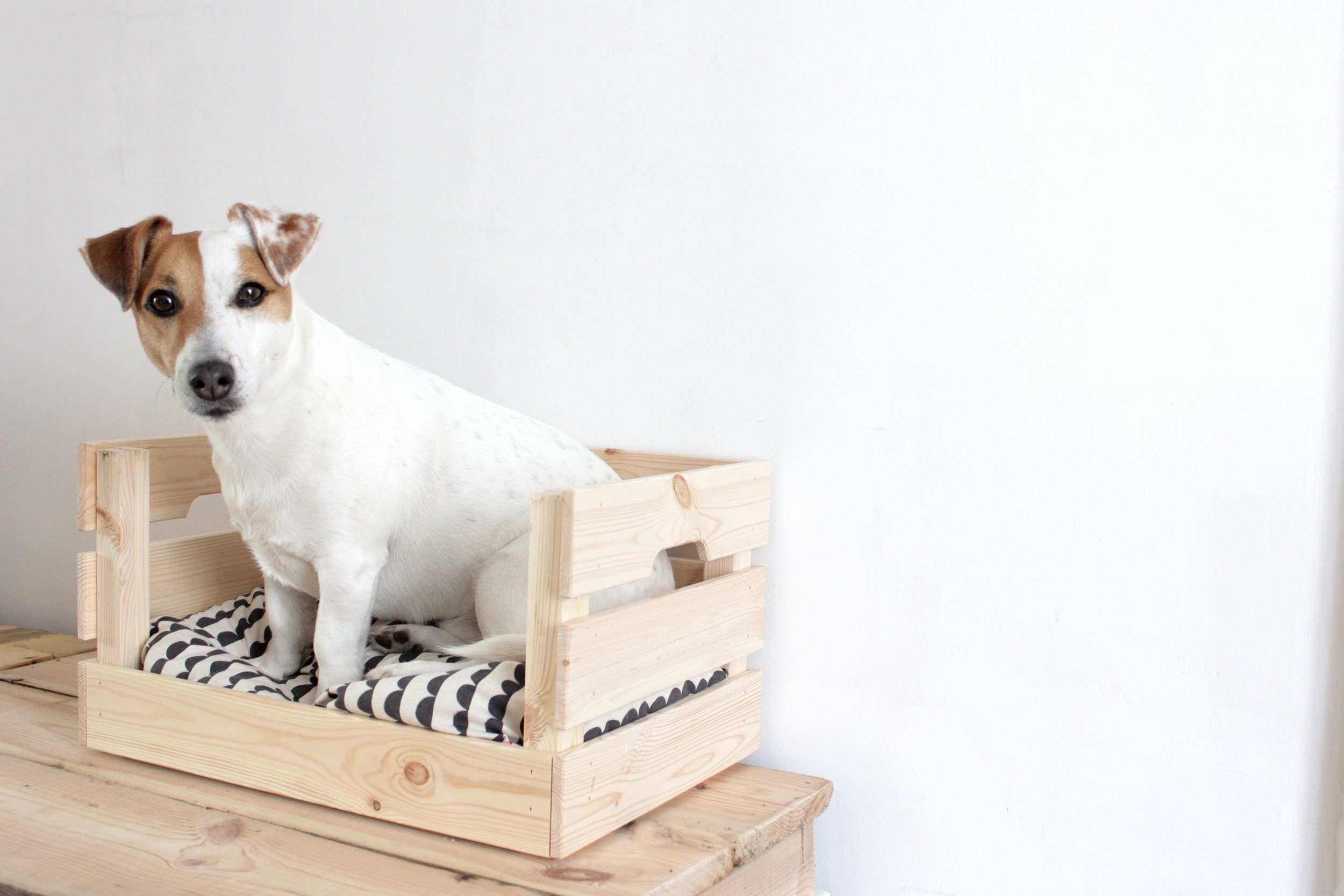 Ikea Hacks Küchentheke Ikea Hacks Dog Cat Shelves About A 50 Project Including The Bed
