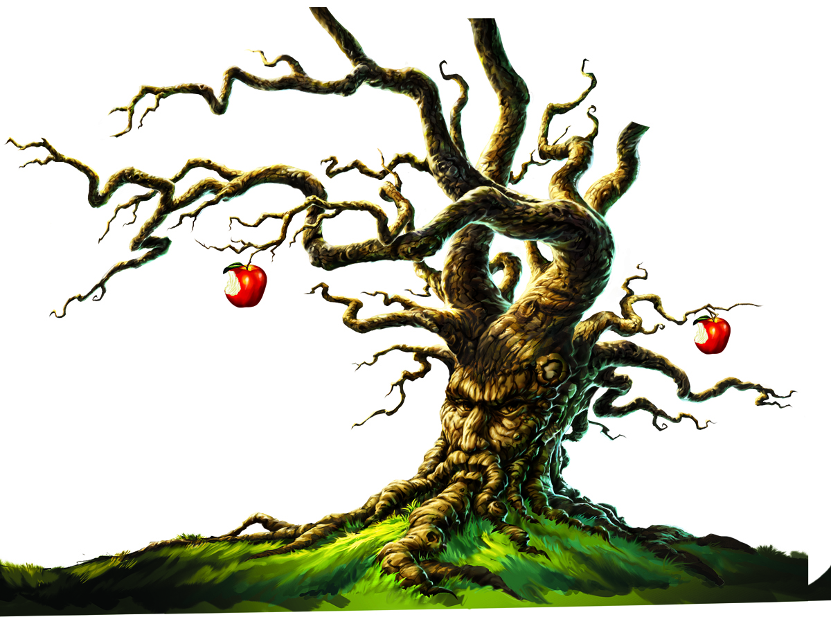 Angry Orchard Hard Apple Cider \u2014 Gregory Titus Illustration