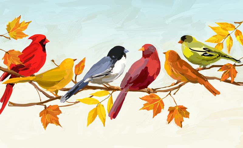 Fall Leaves Wallpaper Birds Amp Beasts Martha Collins Studio