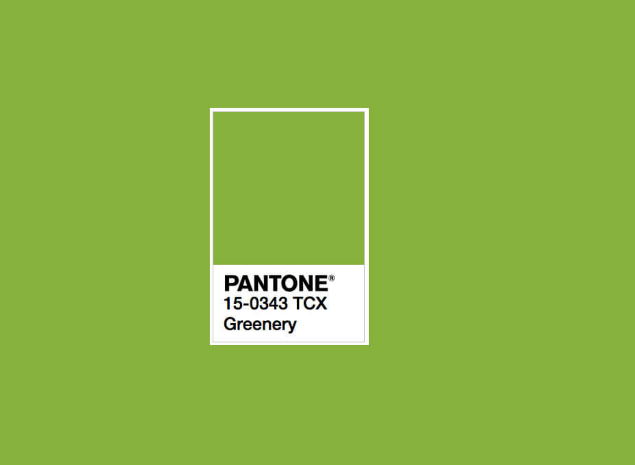 Pantone 2017 Greenery 2017 Pantone Color Of The Year The Empty Apartment