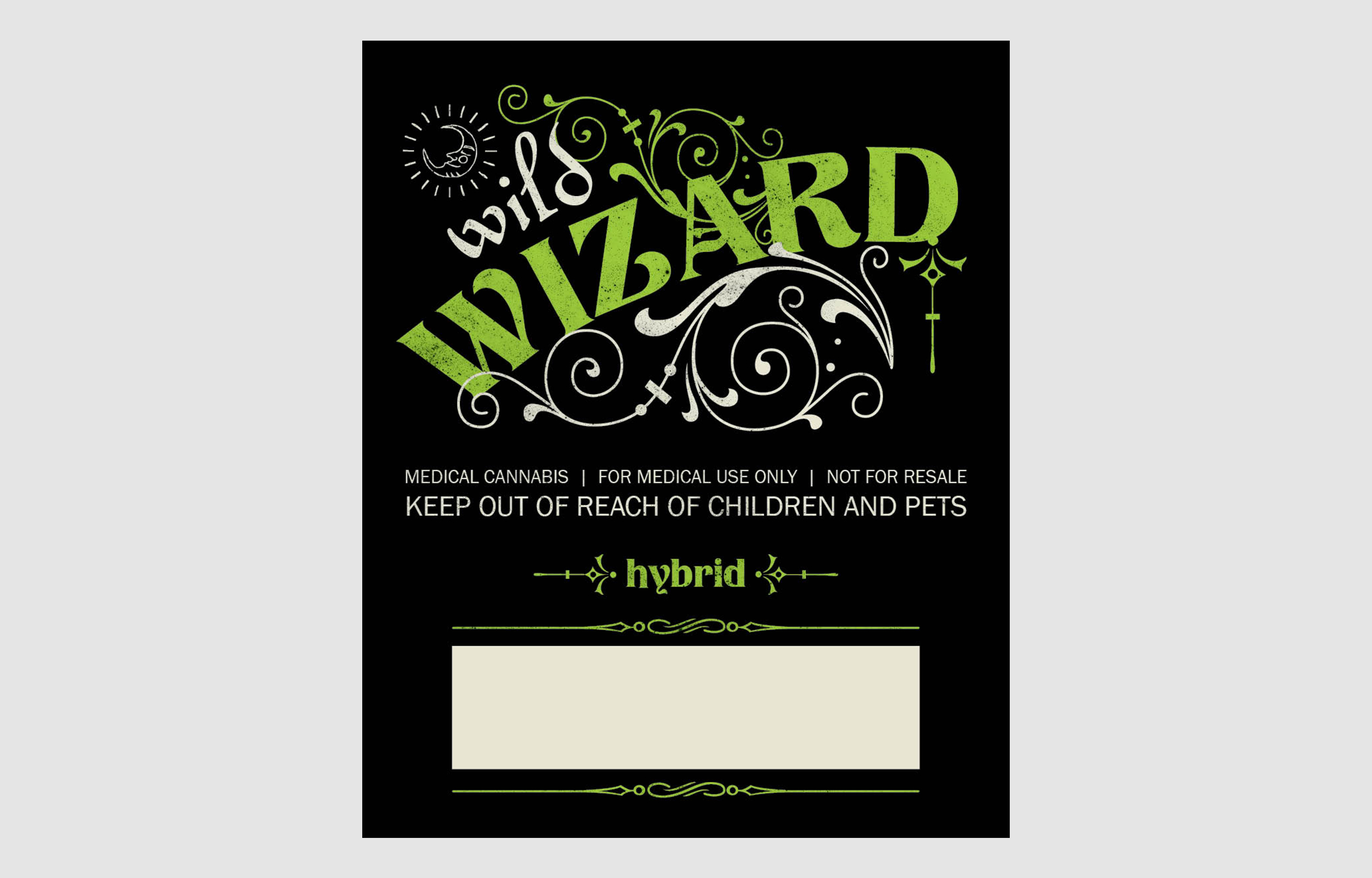 Wild Wizard \u2014 Amanda Weedmark  Retro Design  Illustration