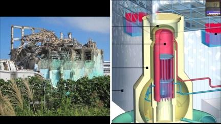 Fukushima Story 469.jpg
