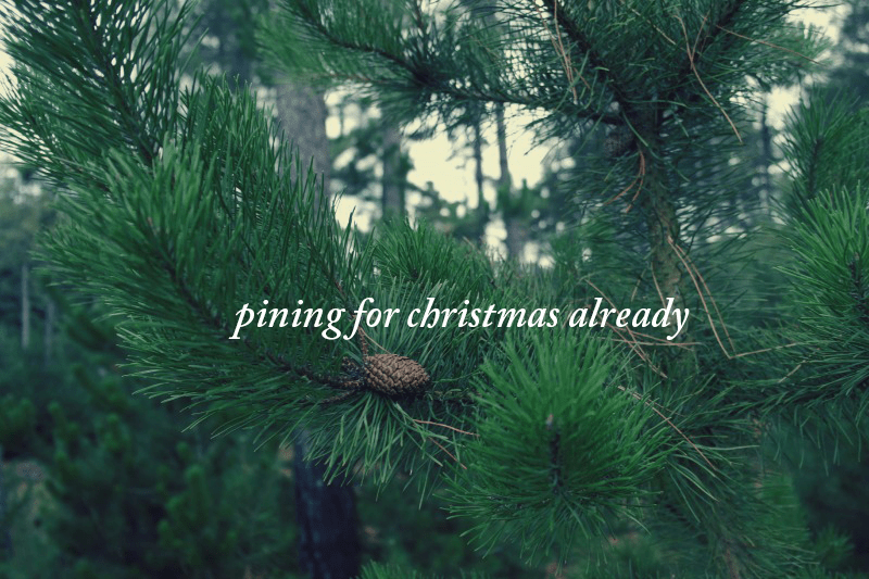 pining for christmas already
