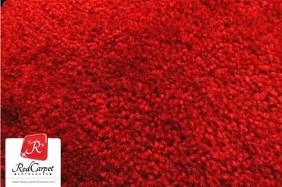 Red Carpet Runner — Red Carpet Runner & Backdrop Distributor