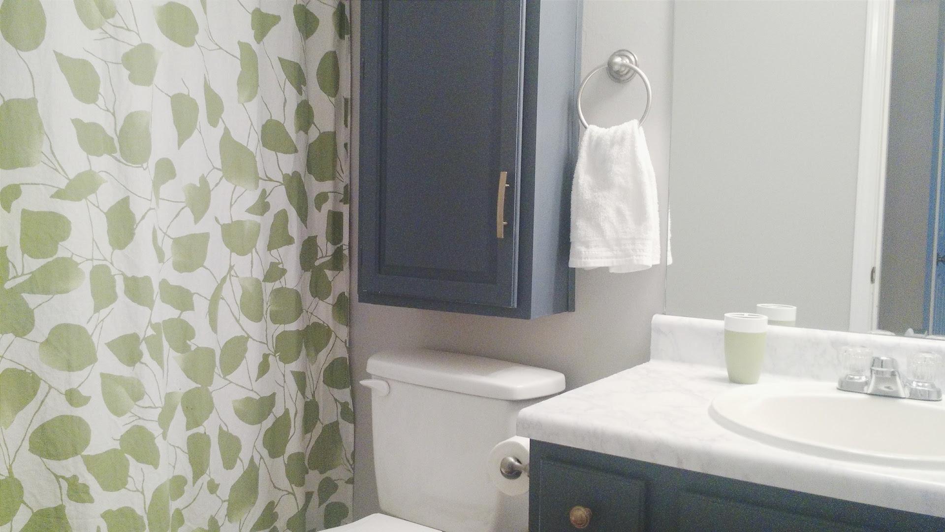Guest bathroom joy lynn