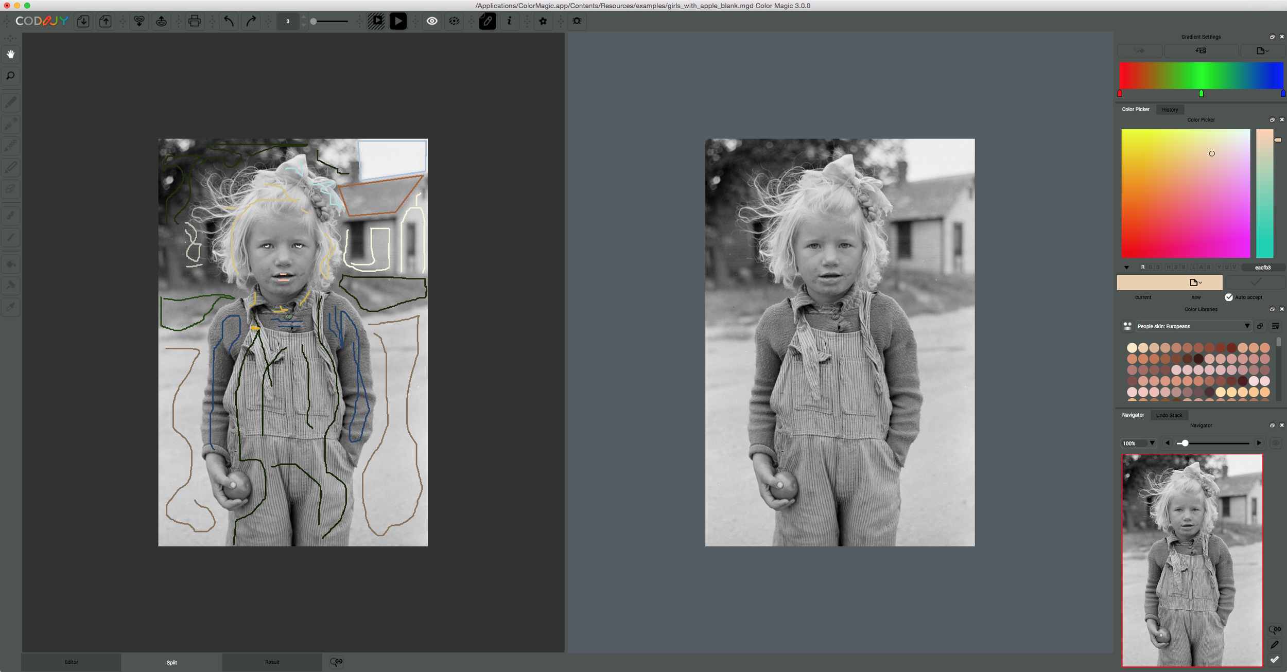 Bringing grayscale to life with Codijy Color Magic 3 for Mac \u2014 Apple