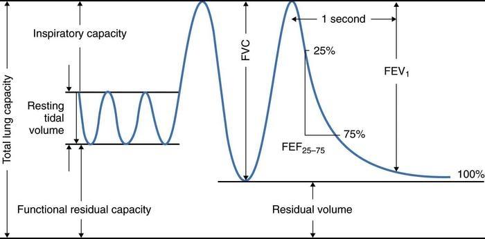 Pulmonary Function Testing, Simplified \u2014 IMRESPDX