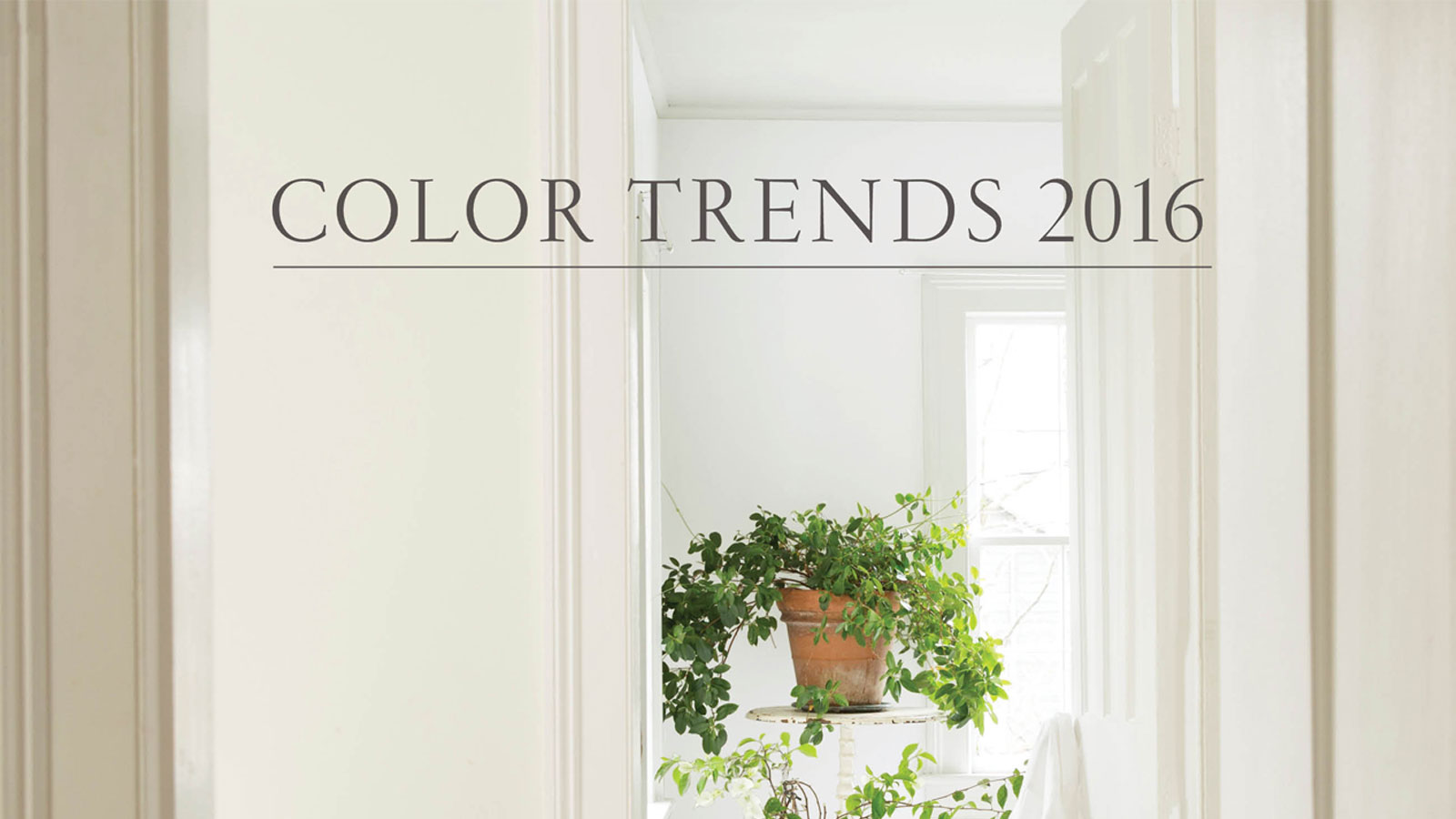 2016 Paint Trends Colour Trends 2016 Eastside Paint And Wallpaper Benjamin Moore