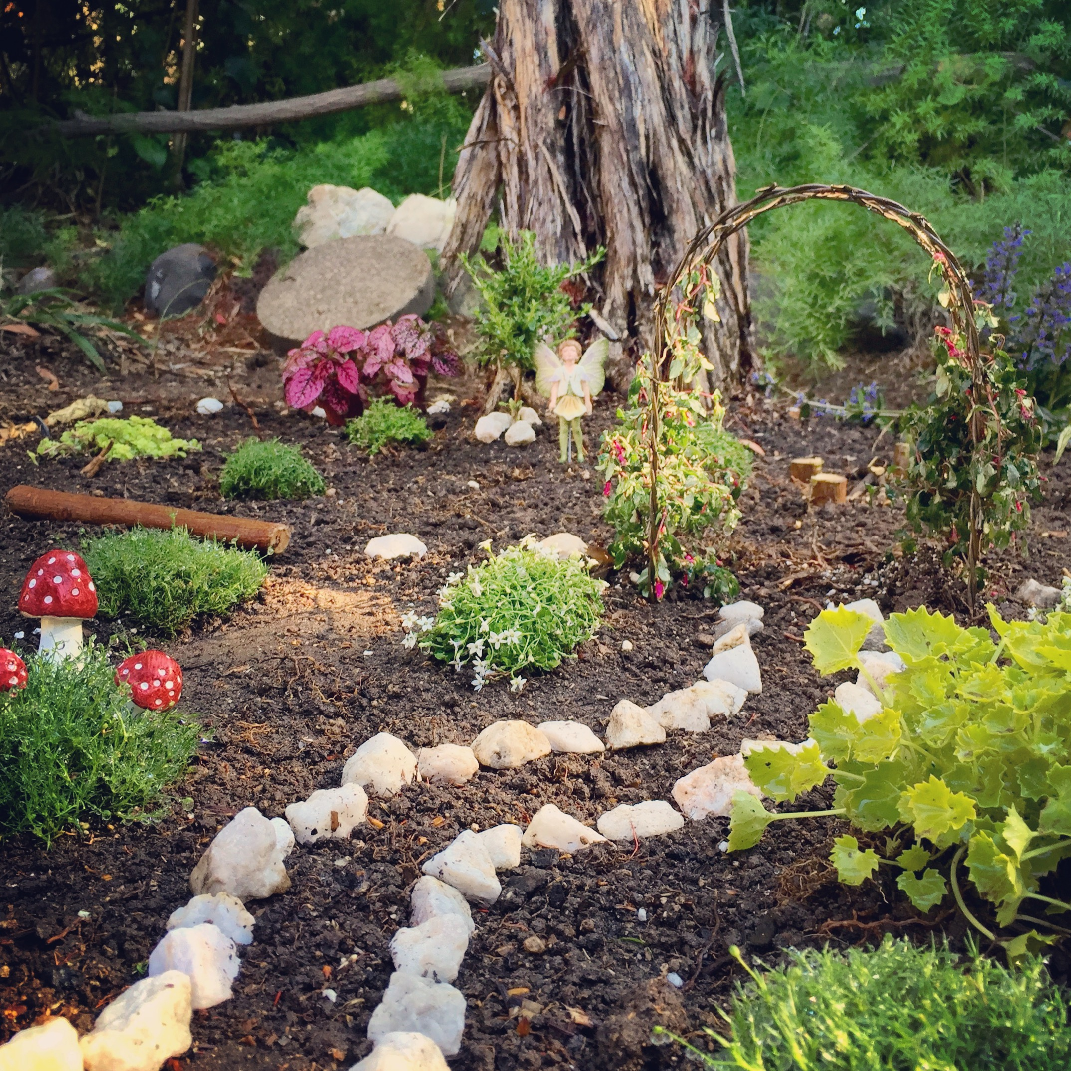Fullsize Of Natural Fairy Garden