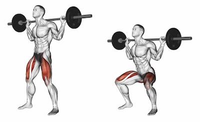 Exercise Database Legs1 Barbell Back Squats Jase