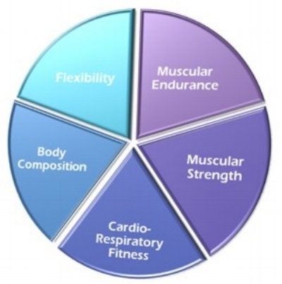 Cory MarQuis Int \u2014 5 COMPONENTS OF PHYSICAL FITNESS - components of fitness