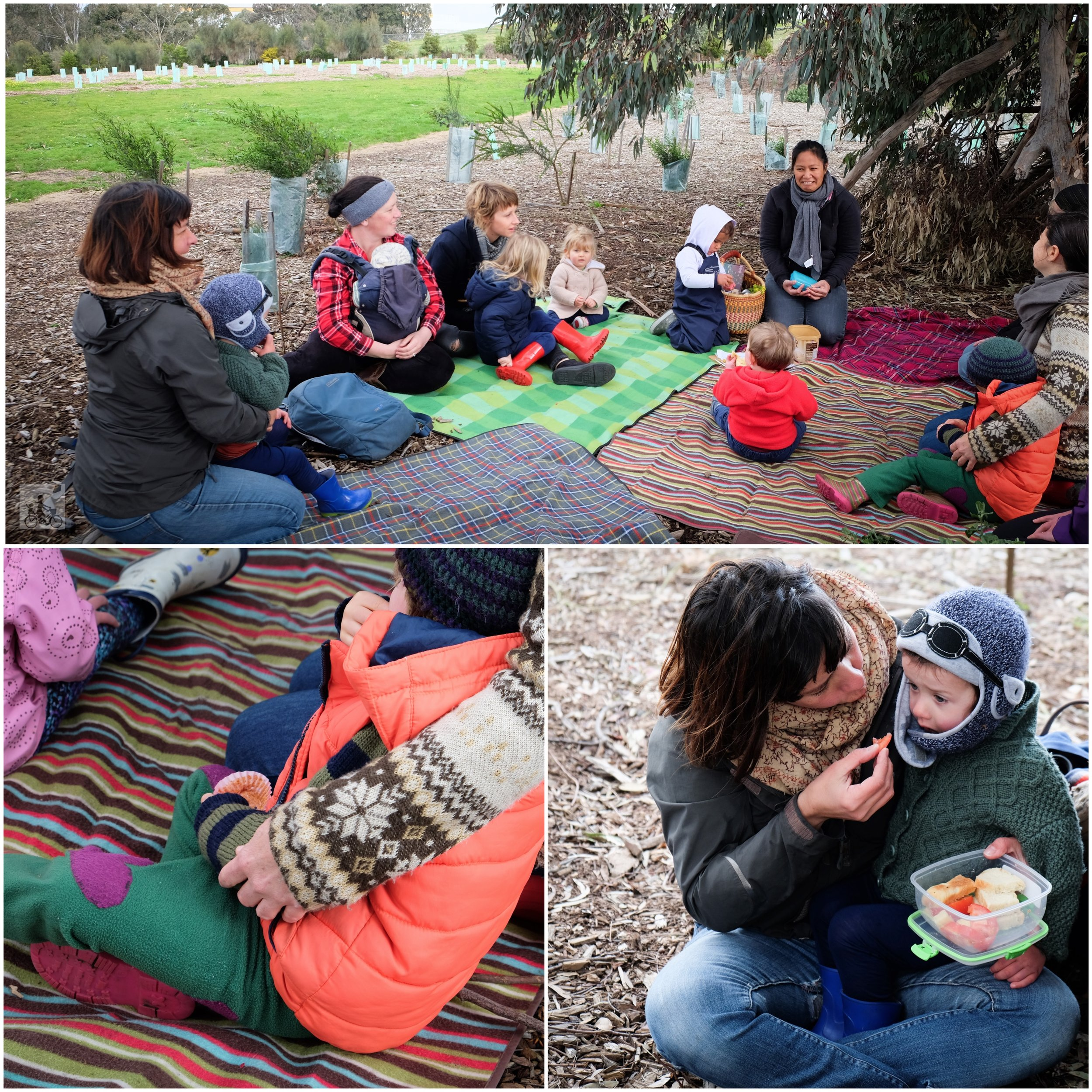 Outdoor Kinder Playgroup In Focus Edgers Creek Bush Playgroup Coburg North