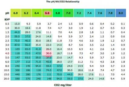 CO2 Striking the balance \u2014 Practical Fishkeeping Magazine