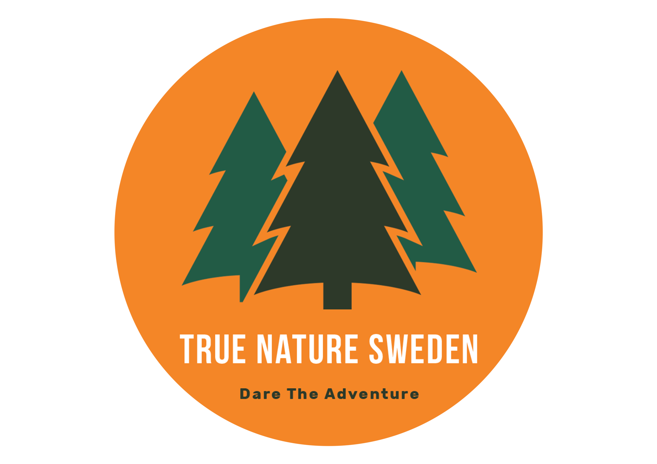 Tours Trip Swedish Nature Tours Guide And Trip To Sweden