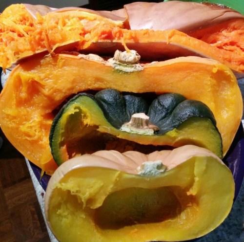Medium Of Long Island Cheese Pumpkin