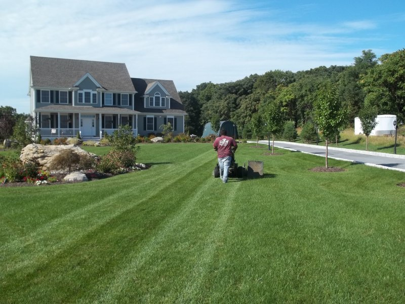 Large Of Big Country Lawn And Landscape