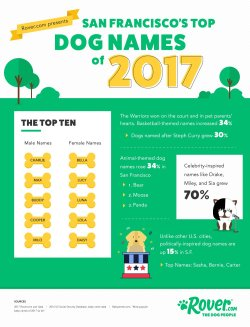 Small Of German Female Dog Names