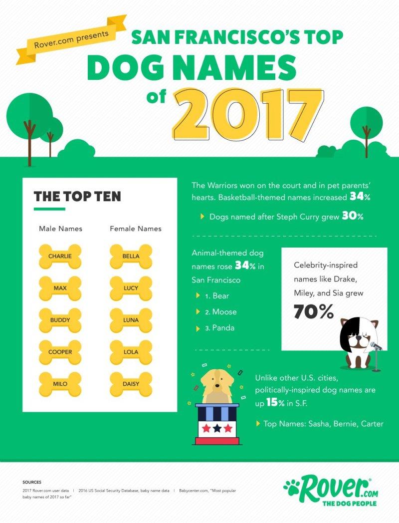 Large Of German Female Dog Names