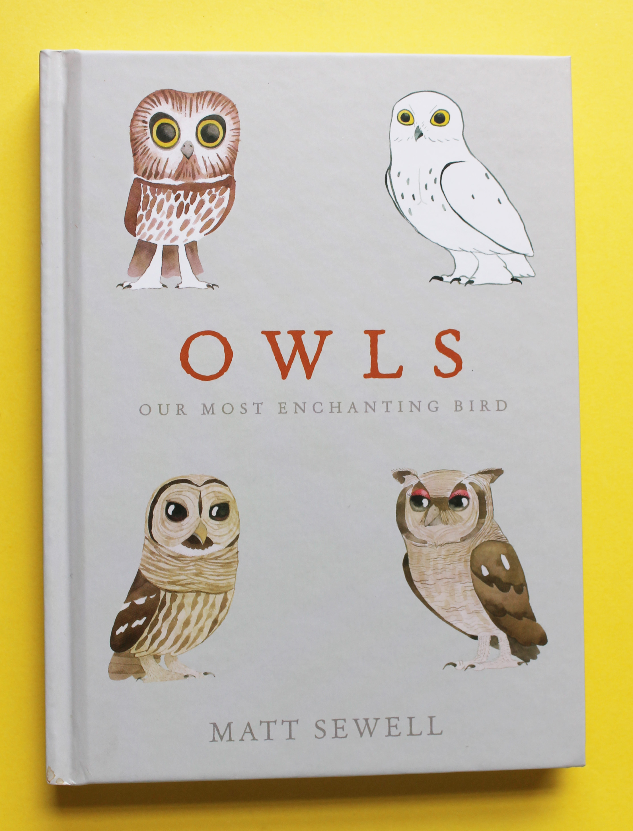 Garten Design Owl Books Matt Sewell