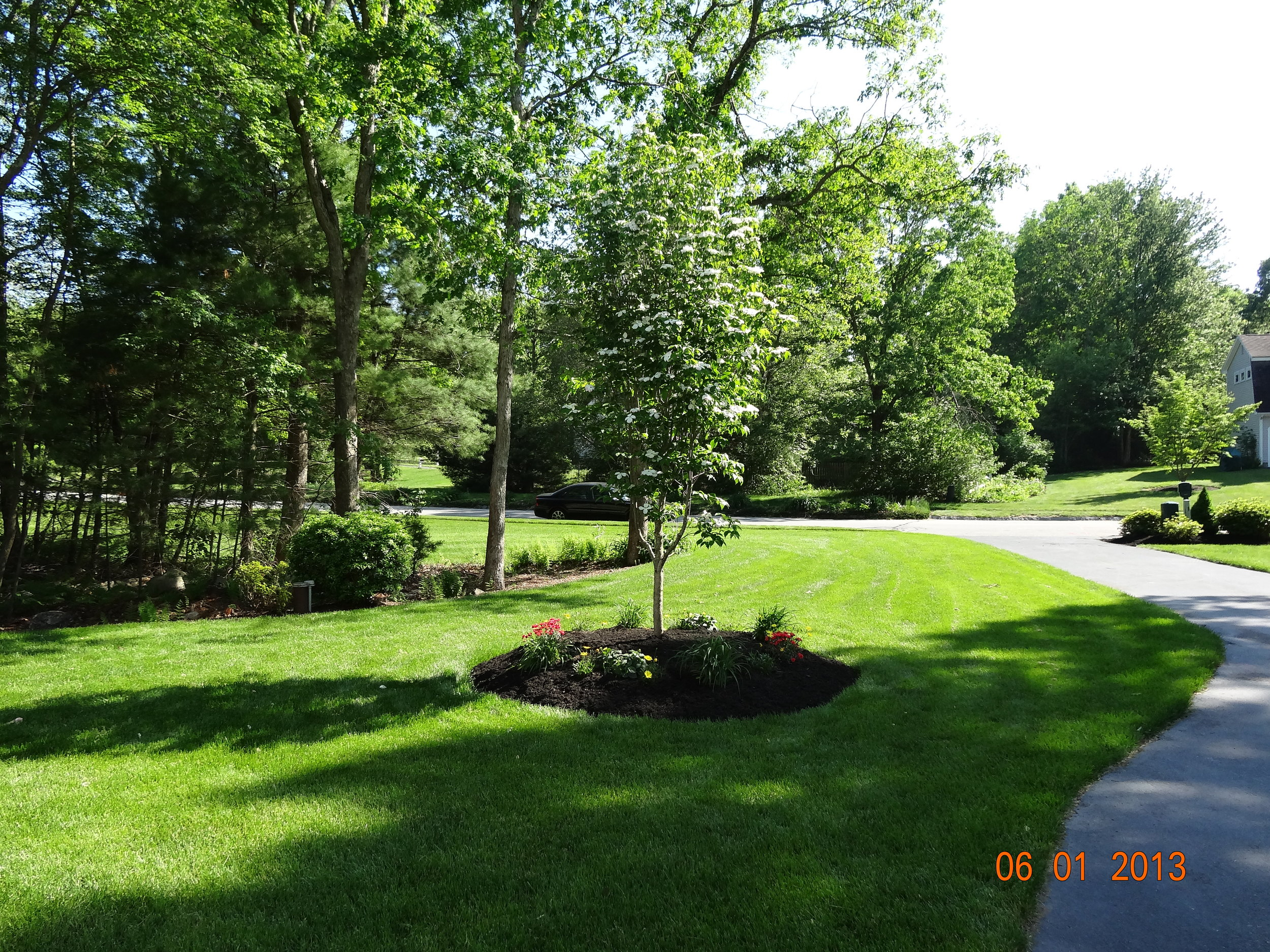 Trees And Shrubs Want To Improve Your Front Entrance With Trees And Shrubs Sign Up