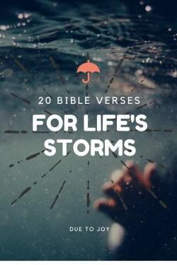 Small Of Joy Bible Verses