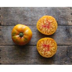 Small Crop Of Mr Stripey Tomato