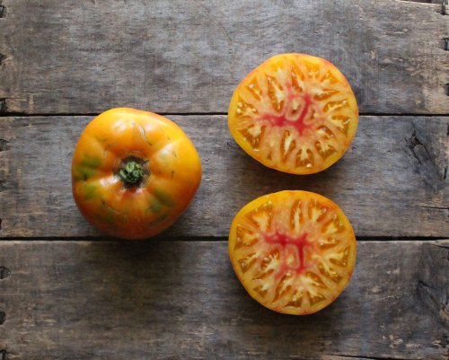Medium Of Mr Stripey Tomato