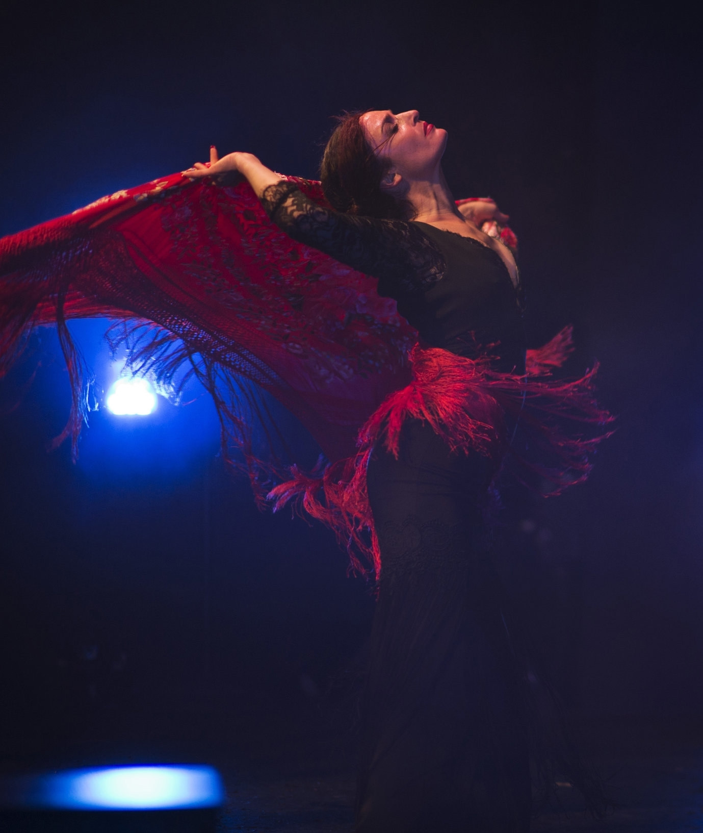 Flamenco Arte Y Ole Artists 2019 Austin Flamenco Festival
