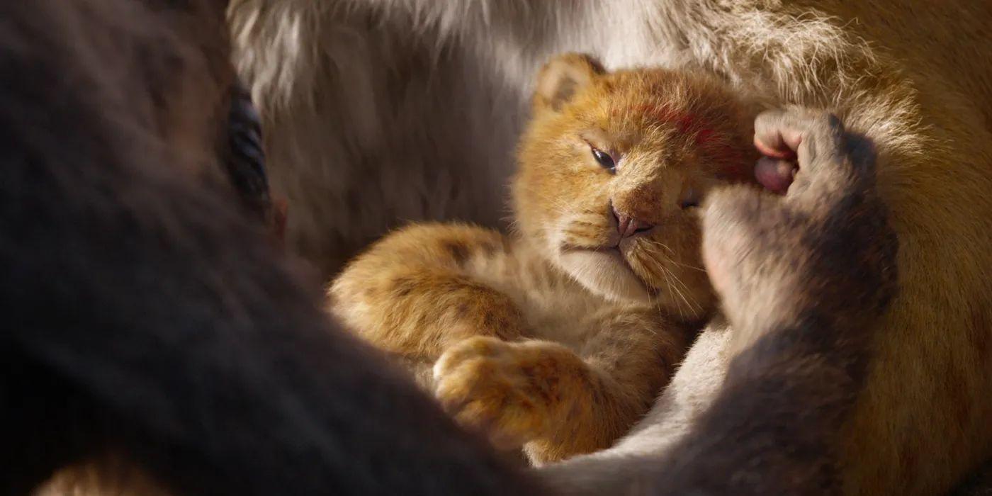 lion king movie trailer live action
