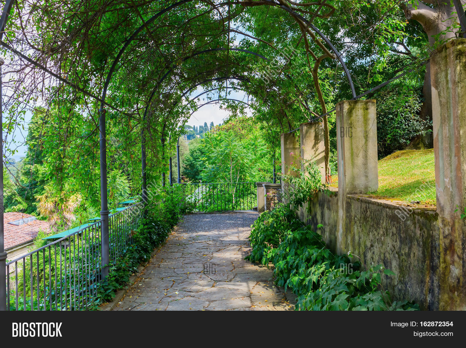 Tree Tunnel Giardino Image Photo Free Trial Bigstock