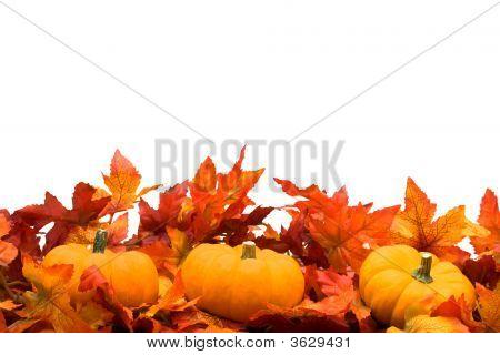 Fall Harvest Border Image  Photo (Free Trial) Bigstock