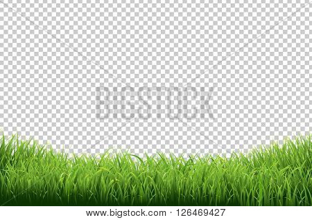 Falling Weed Live Wallpaper Download Images Illustrations Amp Vectors Free Bigstock
