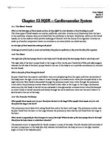 Case Study Sample A Urinary Tract Infection Cell Biology Vascular System Essay Report52webfc2